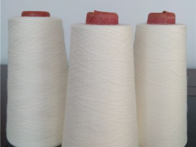点击查看详细信息<br>标题:抗阻燃腈纶/棉混纺纱 阅读次数:1113