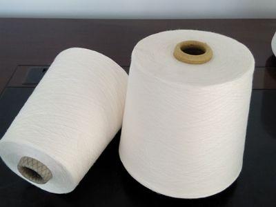 点击查看详细信息<br>标题:气流纺涤纶纱 阅读次数:1043