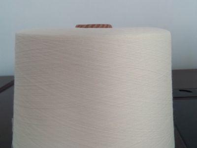 点击查看详细信息<br>标题:喷气纺涤纶纱 阅读次数:1046
