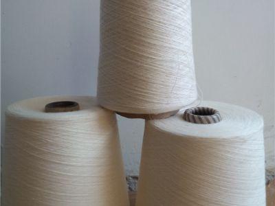 点击查看详细信息<br>标题:涡流纺棉粘纱 阅读次数:818