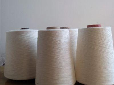 点击查看详细信息<br>标题:环锭纺棉粘纱 阅读次数:2727