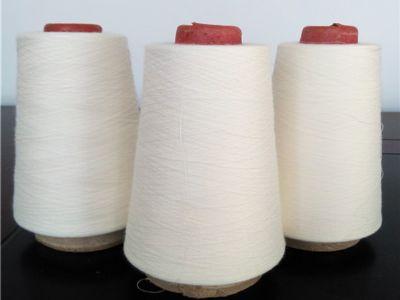 点击查看详细信息<br>标题:紧密纺竹纤维纱 阅读次数:912